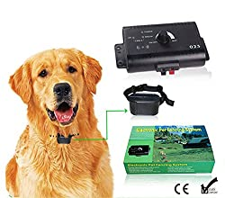 High Performance Electronic Pet Fencing System Invisible Dog Fence