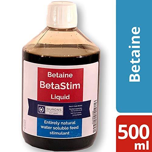 OURONS 500ml Beta Stim Betain-Liquid für Boilies, Partikelmischungen und Fischköder
