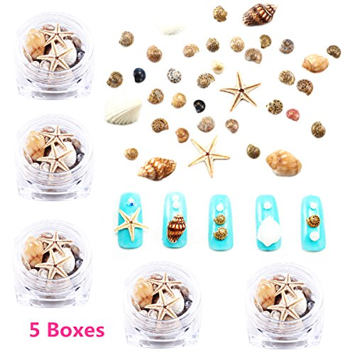 5 Pots Shell&Conch Nail Art Decoration Ocean Style Charms Nail Supplies For UV Nail Gel Polish Manicure Accessories Sea Star Abalone Marine Styles Nail Ornaments