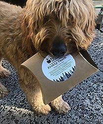 handmade skincare brands ~ Handmade Spa soaps for Dogs