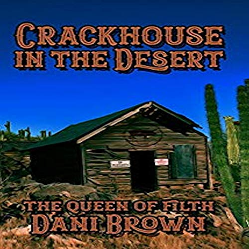 The Crack House in the Desert Titelbild