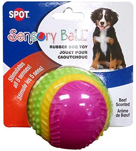 Ethical Pets Sensory Ball Dog Toy, 3.25