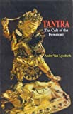 Tantra - The Cult of the Feminine by Andre Van Lysebeth (2011-01-01) - 01/01/2011