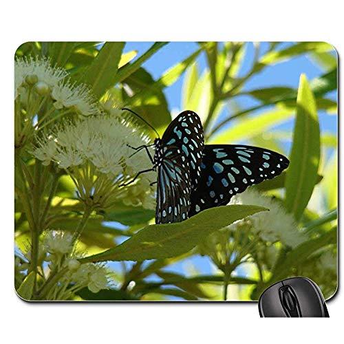 Gummiunterseite Mausmatte,Pad Maus Unterlage,Anti Rutsch Gaming Mausepad,Gepunktete Schmetterlings-Insekten-Flügel-Tier-Wanze Helle Büro-Computer-Auflage,Glattes Mousemat,30X25Cm