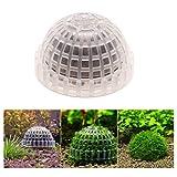 Leikance Pesce serbatoio decorazione palla sommergibile due acqua erba paesaggistica palla Muschio palla 5x2.5cm