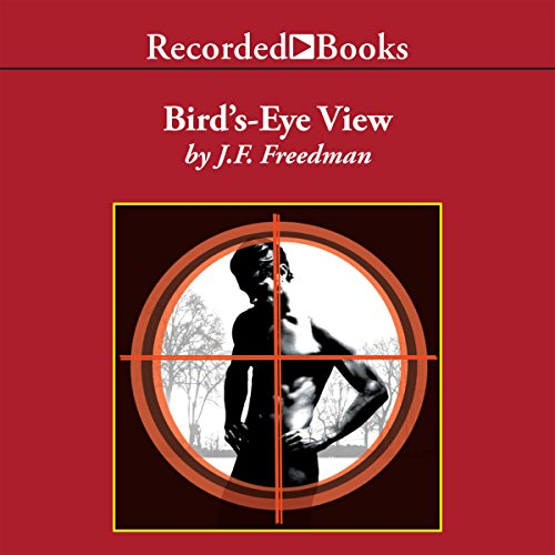 Bird's-Eye View audiobook cover art