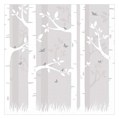 Vliestapete Birkenwald mit Schmetterlingen und Vögel, HxB: 240cm x 240cm