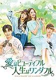 愛はビューティフル、人生はワンダフル DVD-BOX4[DVD]
