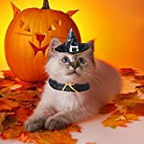 PETLESO Pet Halloween Costume Wizard Witch Hat for Cats Dogs