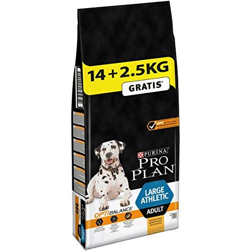 Pro Plan Purina Sac d'Aliment Complet pour Chiens Adultes athlétiques de Grande Taille Aliment Sec Riche en Poulet avec Optibalance™