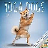 Yoga Dogs Calendar 2020 Yoga Dogs Wall Calendar Bundle Includes Over 100 Calendar Stickers