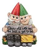 Ebros Gartenzwerg / Gartenzwerg 'Grow Old with Me The Best is Yet to Be', sitzend auf Gartenscheite, 15,9 cm hoch