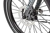 Tern Faltrad Vektron P7i Fahrrad E-Bike 7 Gang Alu Grau 25 km/h Nabenschaltung Shimano 36V 250W, CB19EHPC07HLRLH23 - 9