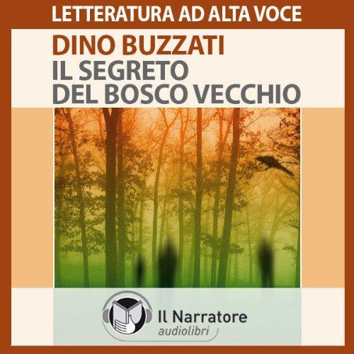 Il segreto del bosco vecchio audiobook cover art