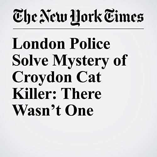 London Police Solve Mystery of Croydon Cat Killer: There Wasn't One copertina