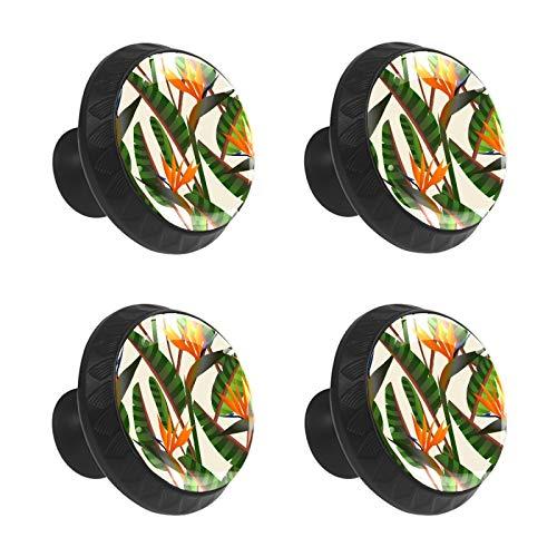 FCZ 4 pomos de cajón con forma de círculo de cristal con forma de pájaro del paraíso, con tornillos para el hogar, la cocina, la oficina