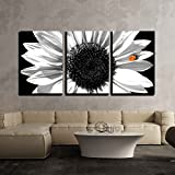 wall26 - Sunflower in Black and White - Canvas Art Wall Art - 24'x36'x3 Panels