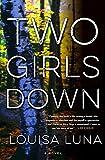 Two Girls Down: A Novel (An Alice Vega Novel)