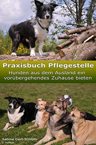 Praxisbuch Pflegestelle: Hunden aus dem Ausland ein vorübergehendes Zuhause bieten