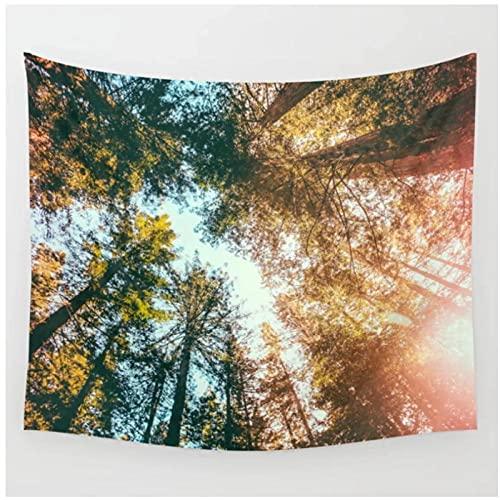 QJIAHQ Tapiz de Sol y Cielo de secuoyas de California, Tapiz para Colgar en la Pared, Colcha, decoración de la Pared de la habitación, decoración de la habitación-150 * 200cm
