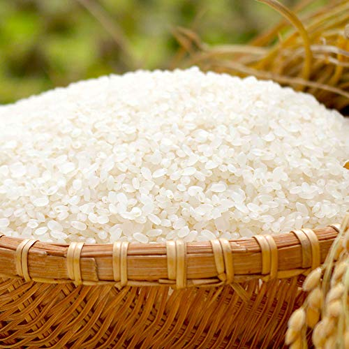北海道産 ゆめぴりか 20kg 米 白米