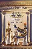 Ramses - Geliebt von Amun -: Sechster Teil des Romans aus dem alten Ägypten über Ramses II....
