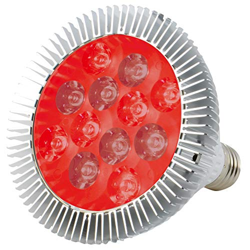 ABI LED Light Bulb for Red Light Therapy, 660nm Deep Red and 850nm Near Infrared Combo, 24W Class