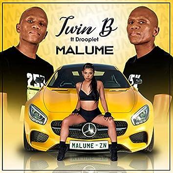 Malume (Radio Edit)