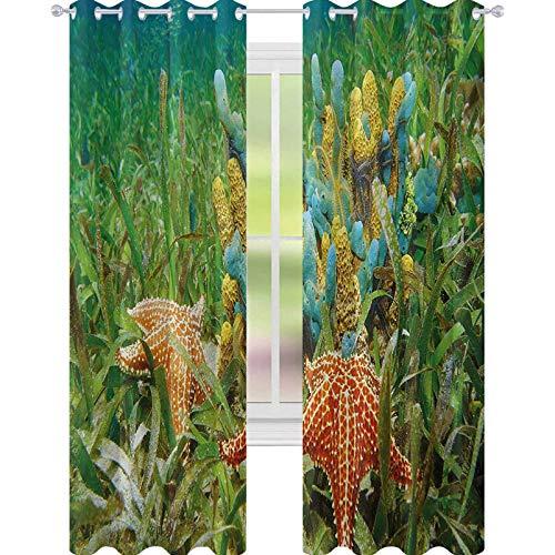 YUAZHOQI Cortina de ventana de estrellas de mar con coloridas esponjas y estrellas de mar rodeada de cortinas de agrass marinas, elegante para sala de estar de 132 x 274 cm, multicolor