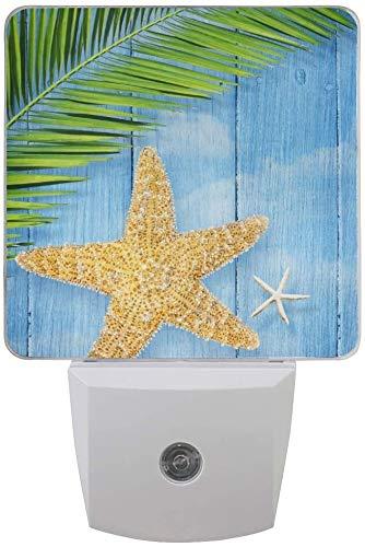 Paquete de 2 lámparas de luz nocturna LED enchufables con diseño de estrella de mar de verano en madera con sensor de anochecer a amanecer para dormitorio, baño, pasillo, escaleras