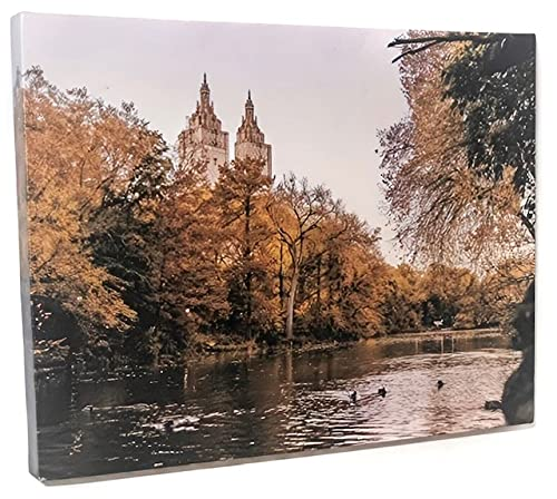 """Canvas Prints Wall Art - Scenic Photo Print of Pond in Central Park, NY on Thick Framed Canvas (1.5"""") Ideal For Home Décor by dazzlpro…"""