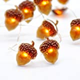 IMPRESS LIFE Christmas String Lights, Acorn 10ft Silver Wire 40 LED Battery Powered with Dimmable Remote Timer for Ice Age, Indoor Outdoor, Wedding, Birthday Bedroom Fireplace Mantel Xmas Decorations