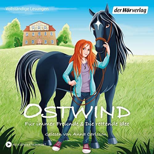 Für immer Freunde & Die rettende Idee - Zwei Geschichten audiobook cover art