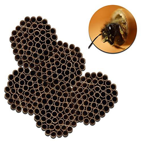BigDean 250x Bienen Niströhre Nisthilfe Insektenhotel für Wildbienen & Hummeln 10 mm Durchmesser & 12 cm Länge