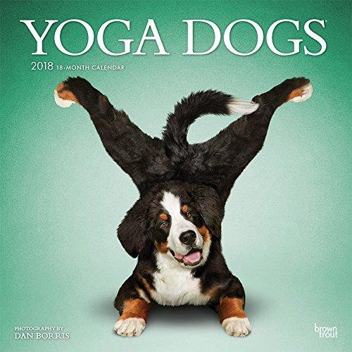 Yoga Dogs - Joga-Hunde 2018 - 18-Monatskalender: Original BrownTrout-Kalender [Mehrsprachig] [Kalender] (Wall-Kalender)