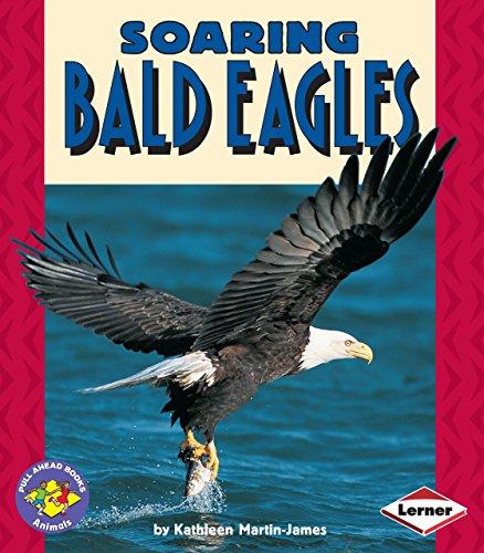 Soaring Bald Eagles (Pull Ahead Books ― Animals)