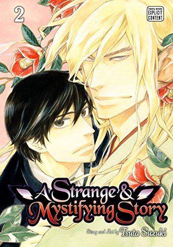 A Strange and Mystifying Story, Vol. 2 (Yaoi Manga)