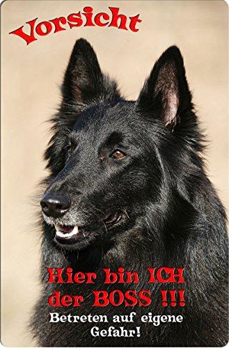 +++ GROENENDAEL Belgischer Schäferhund - Metall WARNSCHILD Schild Hundeschild Sign - GDA 09 T7