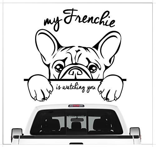 Siviwonder Auto Aufkleber Frenchie Watching Französische Bulldogge Bully Hund Wilsigns Hundeaufkleber autoaufkleber Hund Folie Hundemotiv (schwarz)
