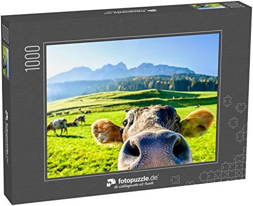 Puzzle 1000 Teile Lustige Kuh am Kaisergebirge Berg - Klassische Puzzle, 1000/200/2000 Teile, in edler Motiv-Schachtel, Fotopuzzle-Kollektion 'Tiere'