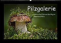 Pilzgalerie - Heimische Pilze aus der Region Rheinland-Pfalz (Wandkalender 2022 DIN A2 quer): 13 beeindruckende Pilzaufnahmen (Monatskalender, 14 Seiten )
