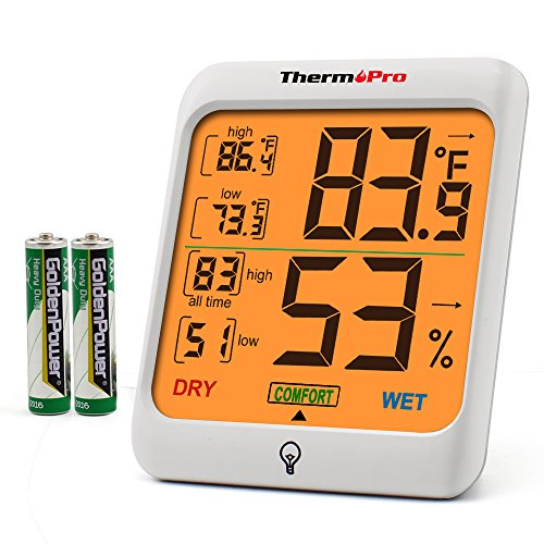 Thermometers & Weather Instruments