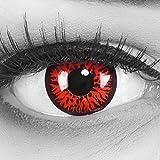Meralens Lenti a Contatto Colorate Lupo Rossa rosse Red Demon Lenses - con porta lenti a c...