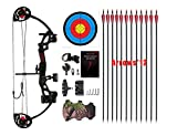 "PANDARUS Compound Bow Archery for Youth and Beginner, Right Handed,19""-28"" Draw Length,15-29 Lbs Draw Weight, 260 fps (Black)"