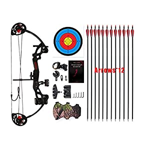 "PANDARUS Compound Bow Archery for Youth and Beginner, Right Handed,19""-28"" Draw Length,15-29 Lbs Draw Weight, 260 fps, Package with Archery Hunting Equipment"
