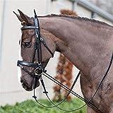 3M Equitazione Briglia Halters Elastic Cavallo Collo barella di Cavalli da Corsa Rein Attrezzature equestri Forniture Strumento di Formazione (Color : Black)