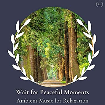 Wait For Peaceful Moments - Ambient Music For Relaxation
