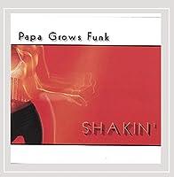 Shakin' by Papa Grows Funk (2007-07-10)