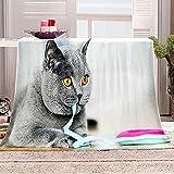 Manta con Estampado Gato Gris Animal Mantas para Sofa Manta de Microfibra Franela Throw de Microfibra Suave cálida y sólida para Cama sofá y Viaje 180x200cm