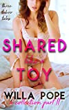 Shared Like a Toy: A Collection Part II: Breaking in his younger fertile bride